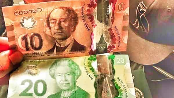 USD/CAD прогноз Канадский Доллар на 11 февраля 2021