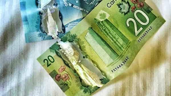 USD/CAD прогноз Канадский Доллар на 15 января 2021