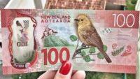 Форекс прогноз и аналитика NZD/USD на 15 января 2020