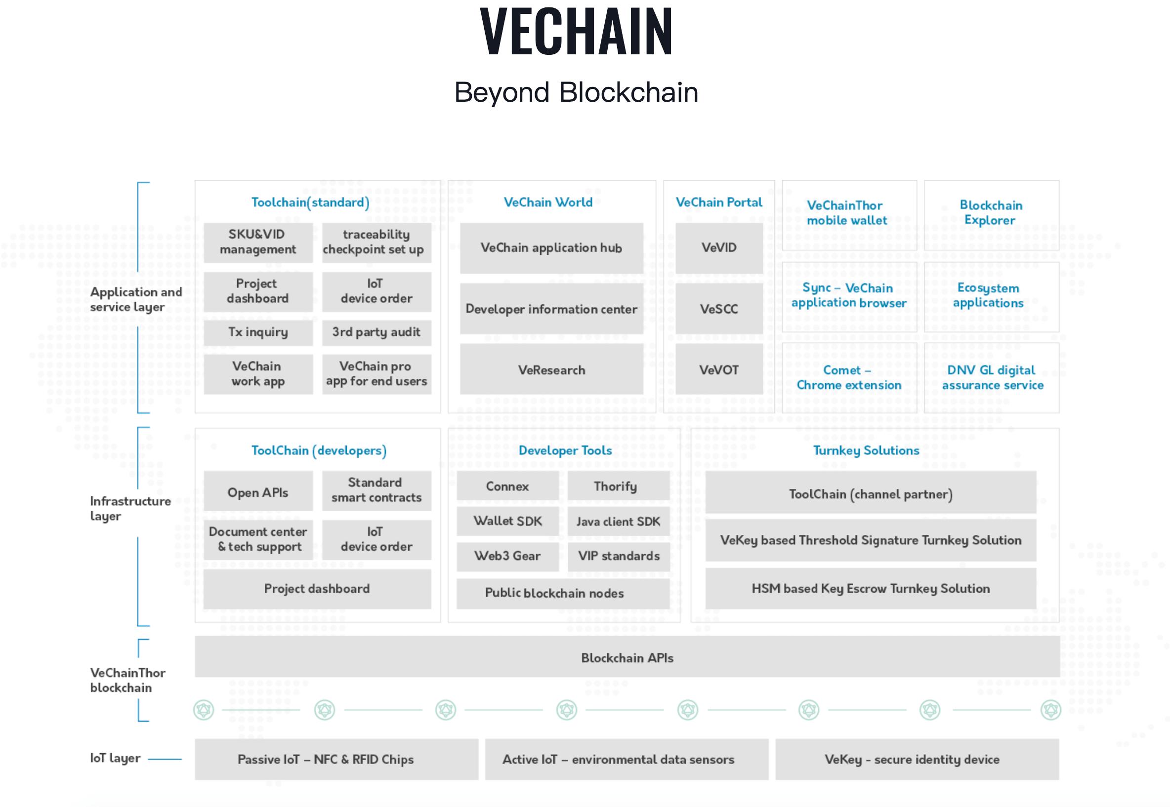 О монете VeChain